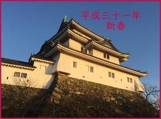 新年の和歌山城2.jpg