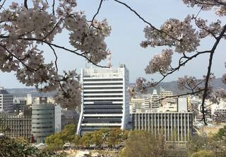 ゲンキ和歌山市.jpg