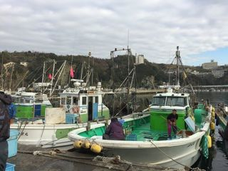 雑賀崎漁船.JPG